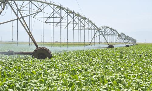 L'amont agricole